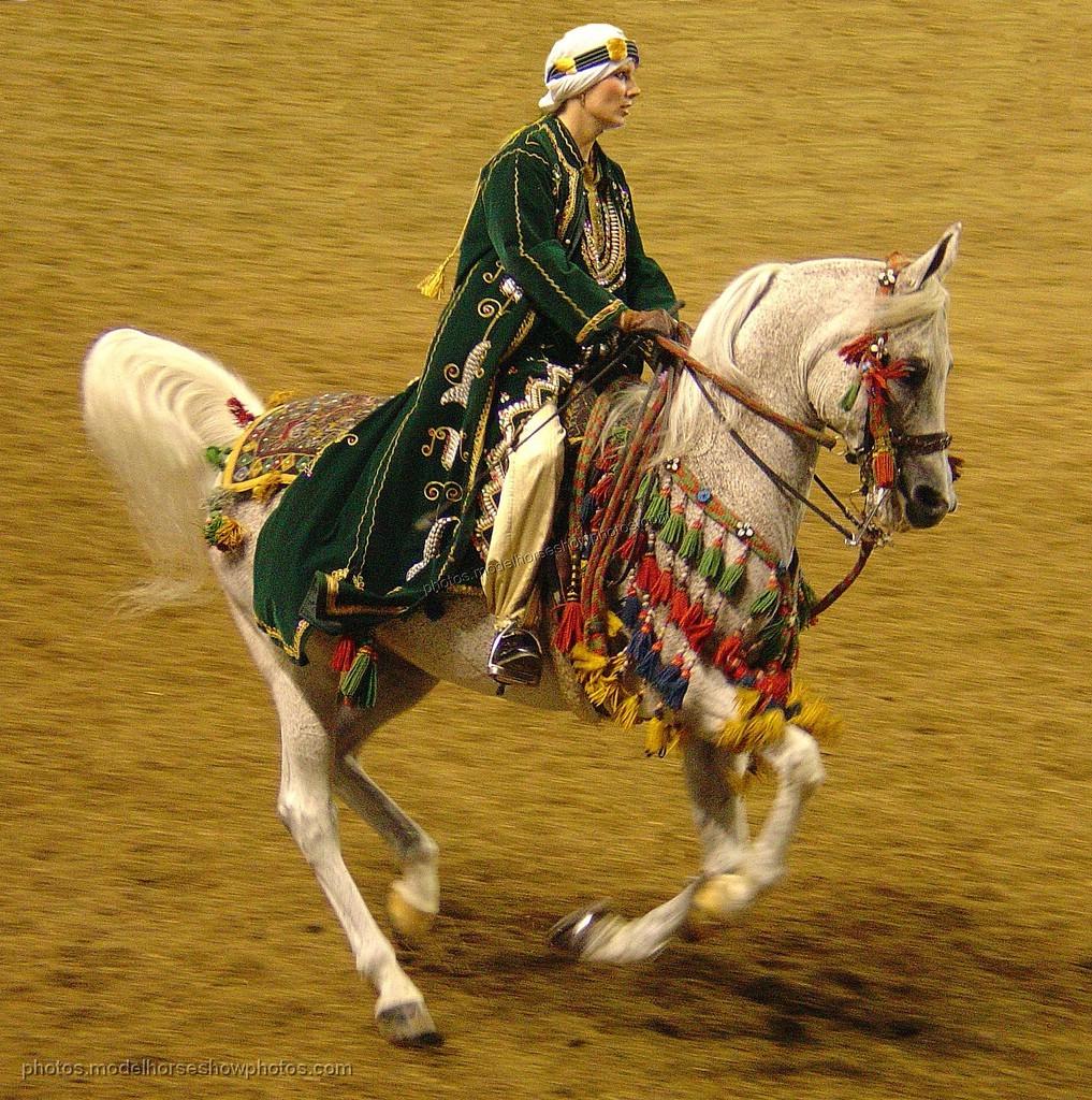 Cum arată caii arabi, vedem aici. Cum vor fi arătat vinurile pe care poetnul le cântă, asta nu ştiu. Dar pot să îmi imaginez.
