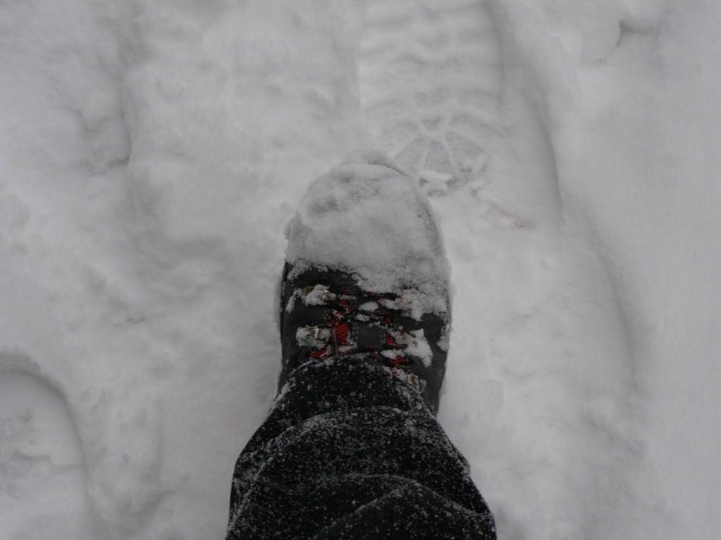Autoportret, pe picior de plecare: 17 ianuarie 2016